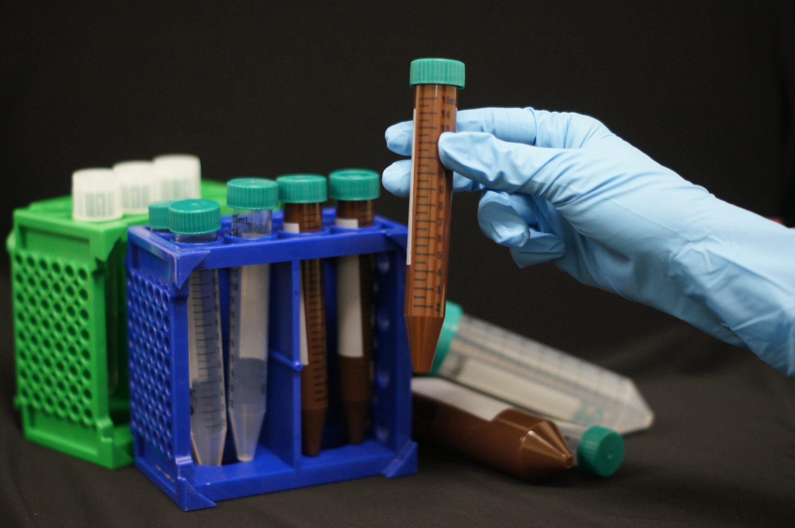 UVsafe™ Amber 15 ml Centrifuge Tubes with Plug Style Caps. Sterile