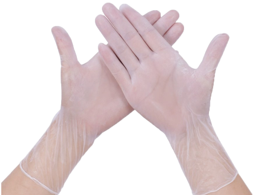 Labskins Disposable Vinyl Gloves